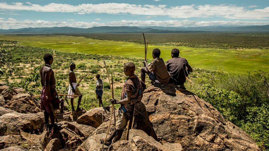 The evolution of Diet.The lifestyle and food habits of the Hadza people, the world's last full-time hunter-gatherer community, living in temporary camps around the Yaeda valley, in Tanzania. The main activities of the community include hunting for wildli